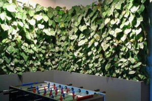pokoje wypoczynkowe, zieleń w firmie, zieleń w biurze