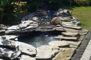 oczko ogrodowe woda w ogrodzie